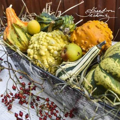Podzimní dekorace, inspirace na tvoření