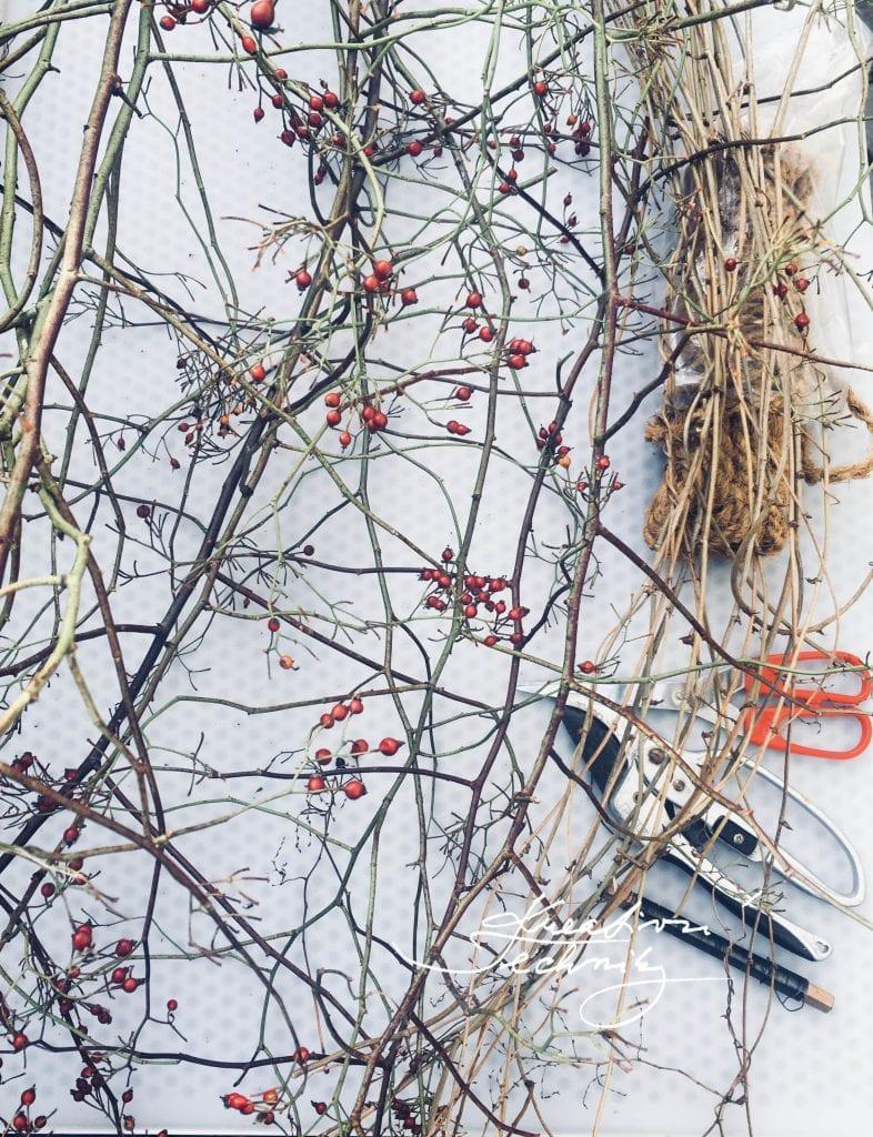 Podzimní dekorace. Rady a nápady. DIY. Kreativní tvoření.