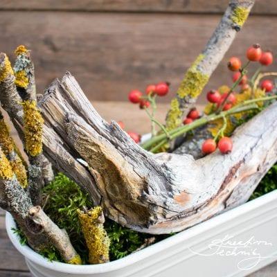 Podzimní truhlíky: Výzdoba podzimních truhlíků