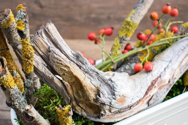 Autumn flower box decorating ideas