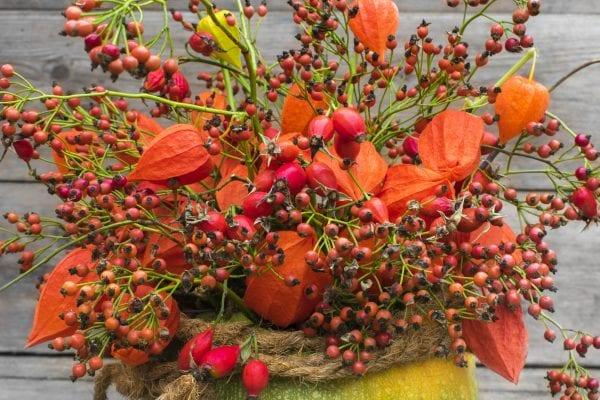Rady a nápady na podzimní dekorace