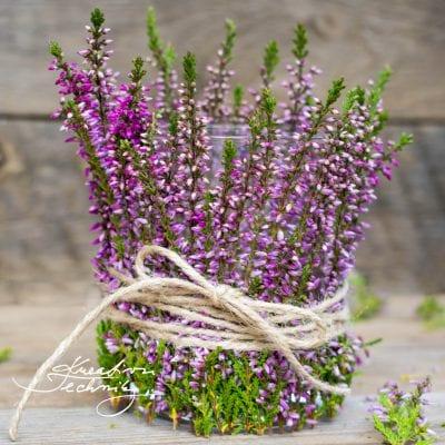Máte rádi vřes? Vyrobte si podzimní svícen na čajovou svíčku.