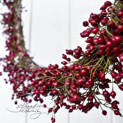 Rosehip autumn wreath