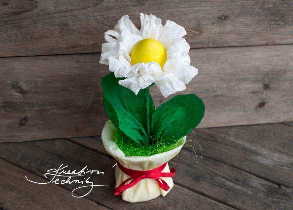 Velikonoční dekorace Velikonoční dekorace vajíčka. Velikonoční aranžmá. Velikonoční tvoření. Velikonoční tvoření s dětmi. Velikonoční tvoření pro děti. Levná velikonoční dekorace. Náměty na velikonoční tvoření. Pinterest velikonoční tvoření. Velikonoční tvoření návody. Jarní dekorace. Jarní dekorace tvoření. Jarní dekorace tvoříme s dětmi. Jarní dekorace tvoření s dětmi.