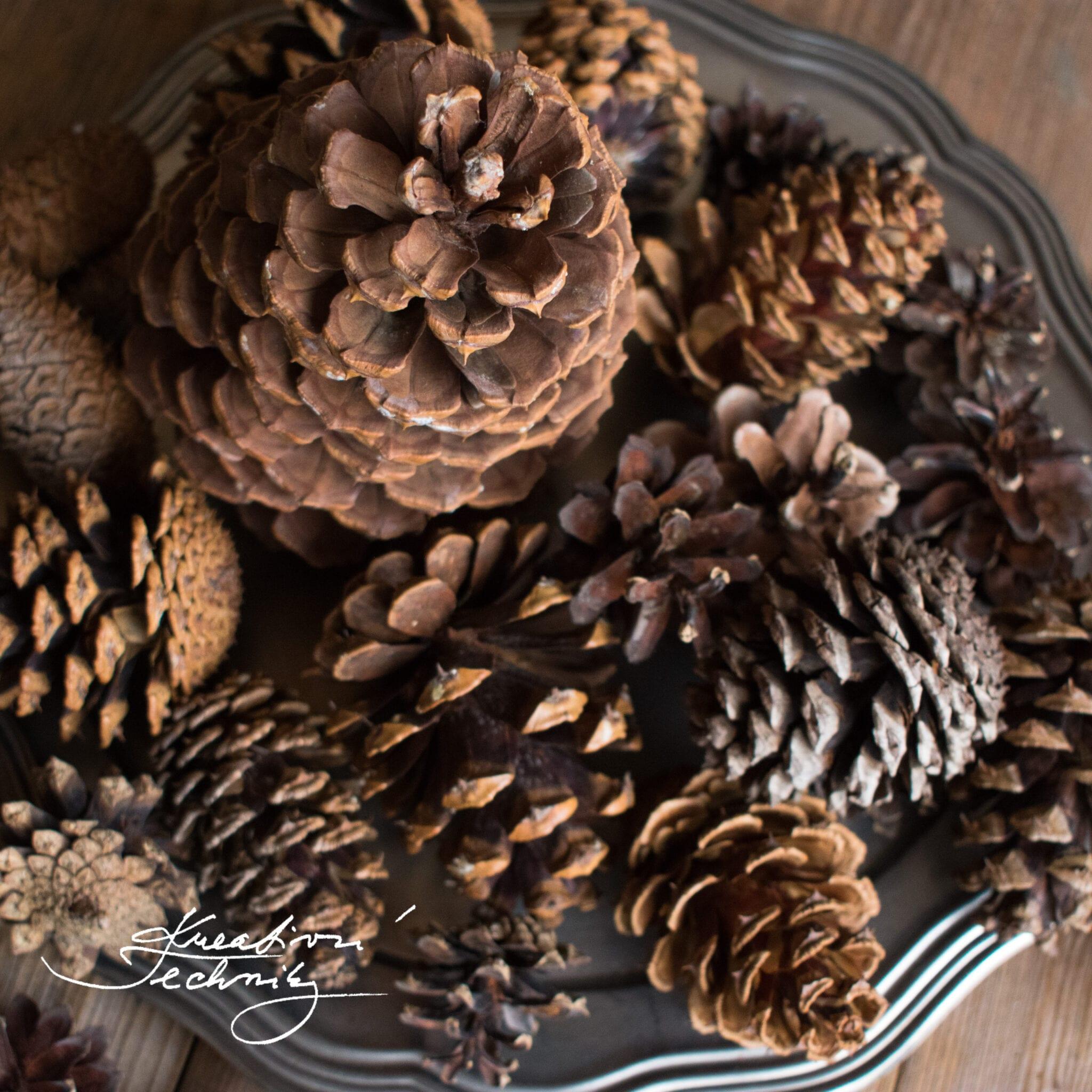 DIY. Dekorace ze šišek. Vánoční dekorace ze šišek.