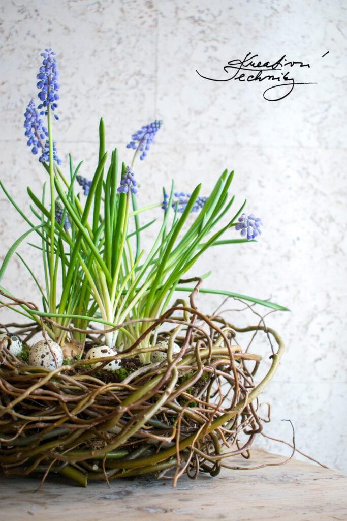 Jarní dekorace z kroucené vrby. Výrobky z kroucené vrby. Co vyrobit z kroucené vrby. Dekorace z vrbového proutí. Jarní výzdoba. Jarní tvoření. Jarní květiny. Přírodní dekorace. Vrba. Návod. Návody. Výroba dekorace. Velikonoční dekorace z vrby. Dekorace z vrby. Dekorace z kroucene vrby. Dekorace z kroucené vrby. Výrobky z kroucené vrby. Dekorace z vrbového proutí. Co si vyrobit z vrbového proutí. Jarní dekorace z kroucené vrby. Kroucená vrba dekorace. Vrbové proutí dekorace.