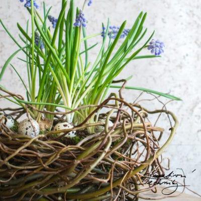 Jarní dekorace z kroucené vrby: DIY
