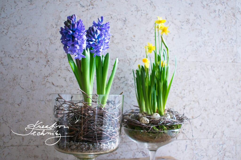 Jarní dekorace. Jarní dekorace na stůl. Jarní květiny. První jarní květiny. Žluté jarní květiny. Žlutá jarní květina. Jarní květina. Jarní květiny na zahrádce. Jarní kvetoucí květiny. Modré jarní květiny. Co kvete na jaře. Fialové jarní květiny. Narcis. Cibuloviny. Kvetoucí jarní květiny. Jarní květiny tvoření. Jarní dekorace inspirace. Jarní dekorace na hrob. Výroba jarní dekorace. Jarní dekorace do bytu. Jarní dekorace domácí výroba. Jarní a velikonoční dekorace. Výroba jarních dekorací. Jarní dekorace tvoření.
