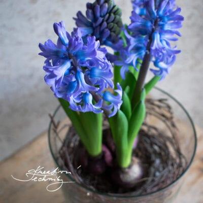 Jarní květiny: inspirace na jarní dekorace