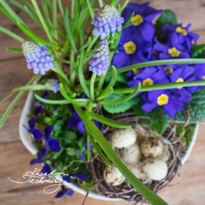 Jarní květinová dekorace v modré