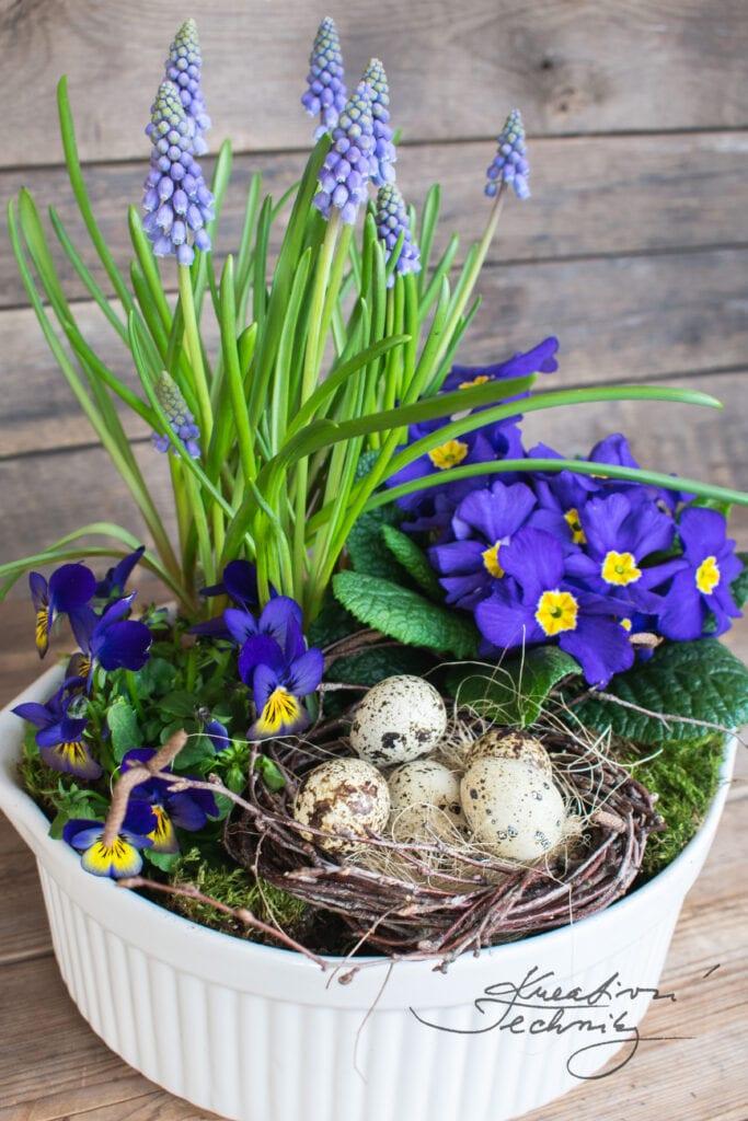 Modré jarní květiny. Co kvete na jaře. Fialové jarní květiny. Narcis. Cibuloviny. Kvetoucí jarní květiny. Jarní květiny tvoření. Jarní květiny. První jarní květiny. Žluté jarní květiny. Žlutá jarní květina. Jarní květina. Jarní květiny na zahrádce. Jarní kvetoucí květiny. Velikonoce. DIY návody. Jarní dekorace z břízy. Jarní dekorace. Jarní dekorace inspirace. Velikonoční dekorace. Velikonoční tvoření. Velikonoční výzdoba. Velikonoční tvoření. Velikonoční vajíčka. Bříza. Z břízy. Březové proutí. Z březového proutí. Z břízy. Křepelčí vajíčka. Jarní výzdoba. Jarní dekorace. Výroba jarní dekorace. Jarní dekorace do bytu. Jarní dekorace domácí výroba. Jarní a velikonoční dekorace. Výroba jarních dekorací. Jarní dekorace tvoření. Výroba jarní dekorace. Jarní dekorace do bytu. Jarní dekorace domácí výroba. Jarní a velikonoční dekorace. Výroba jarních dekorací. Jarní dekorace tvoření.